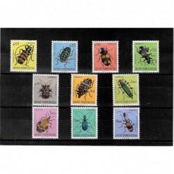 1953 - Insectos da Guiné