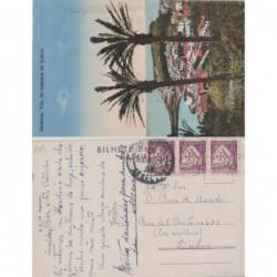 Camara de Lobos - Ref.nº 39