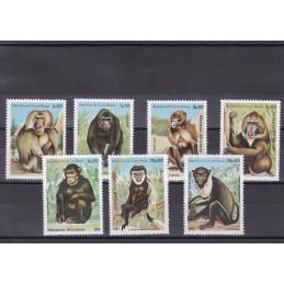 1983 - Macacos Africanos