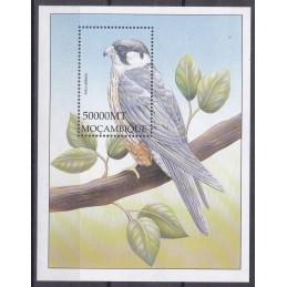 2002 - Fauna Pássaros