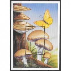 1999 - Cogumelos - II Grupo