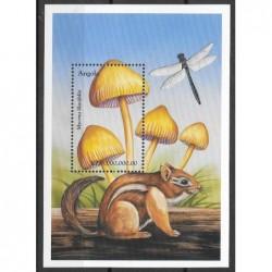 1999 - Cogumelos - III Grupo