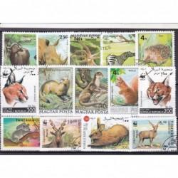 100 Fauna Diferentes