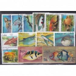 100 Peixes Diferentes