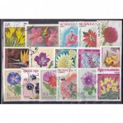 100 Flora Diferentes