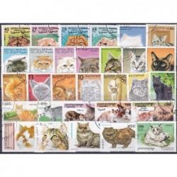 200 Gatos Diferentes
