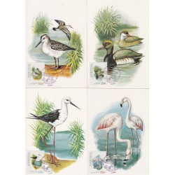 1982 - Aves da Reserva Natural