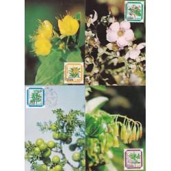 1983 - Flores dos Açores