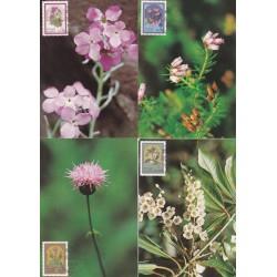 1983 - Flores da Madeira III