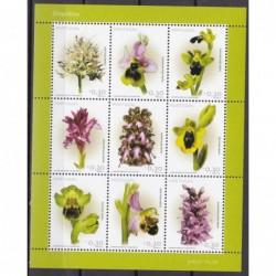 2003 - Orquídeas II
