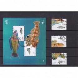 2006 - Peixes da Costa...