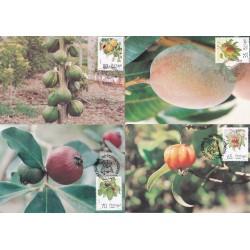1991 - Flores e Plantas II