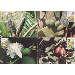 1992 - Flores e Plantas III